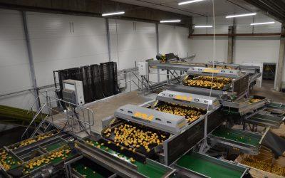 Skals Dynamic Sortiermaschinen, die neue Generation der Kartoffelsortierung