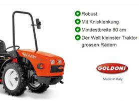 Kleintraktor Goldoni Base 20 SN