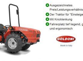 Kleintraktor Goldoni Euro 45 SN
