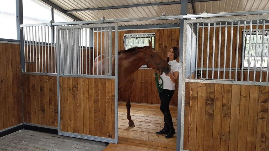 Pferdebox Vorderfront, Boxenfront STANDARD mit Schiebetür