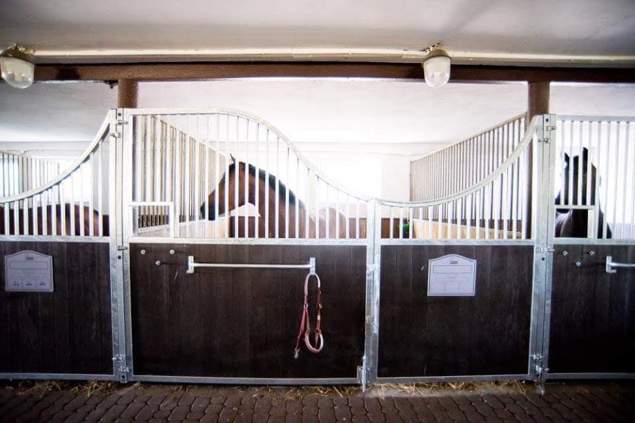 Pferdebox Vorderfront, Boxenfront MADRID