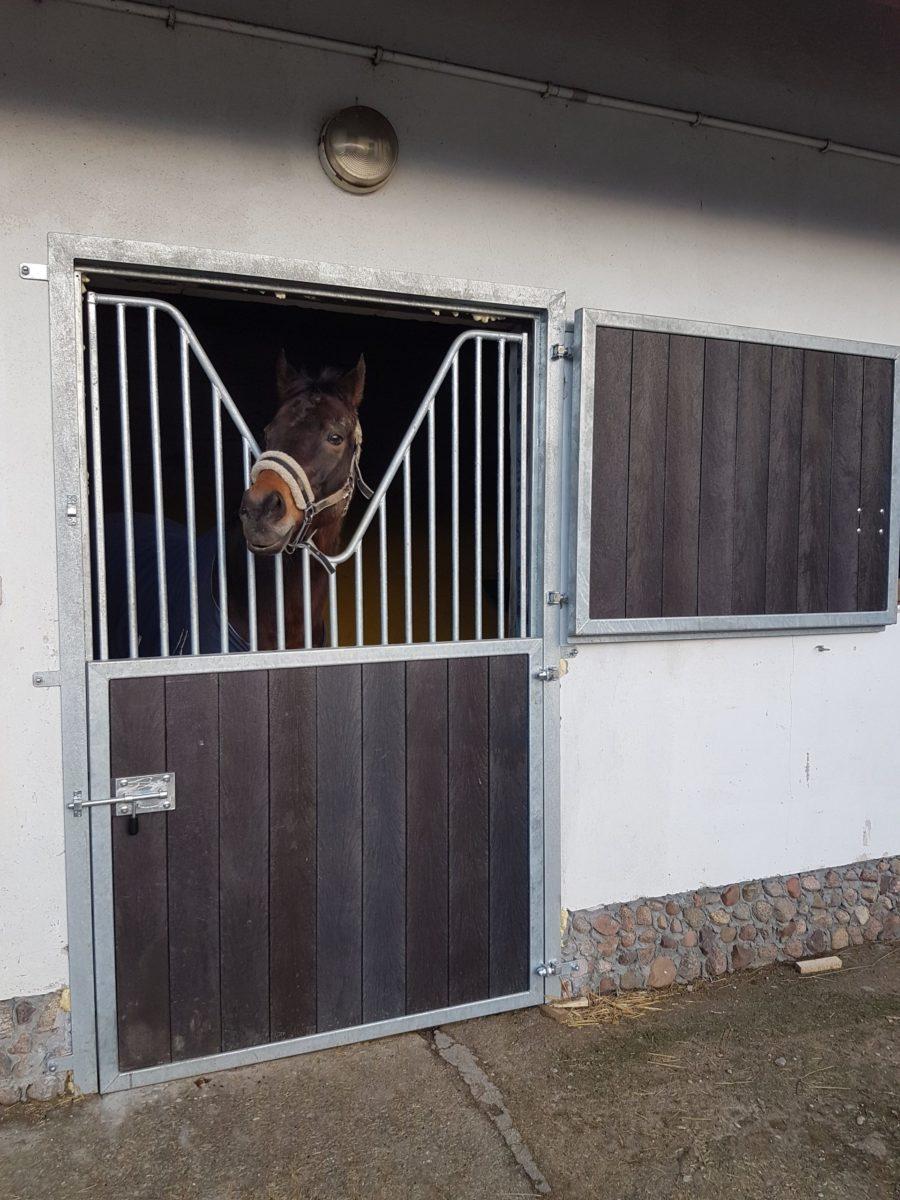 Pferdestalltür, Stalltür STANDARD mit Gitter